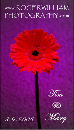 Tim & Mary Purple Card