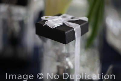 To View The Fusion Highlight Video From Their Wedding Click On This Link  http://www.youtube.com/watch?v=kR2YtrjfYMo&list=UUeVS8R8mNjwxF9vYvZ6xBWg&index=1&feature=plcp