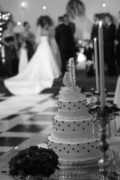 Carrie and Kurt Wedding 04 07 2007 B 142psbw