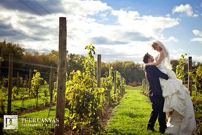 DC Estate Winery Wedding | Renee + Shane