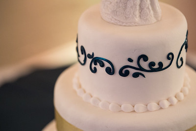 Fraizer Wedding the Reception (17 of 199)