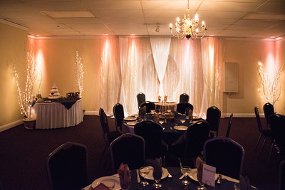 Fraizer Wedding the Reception (4 of 199)