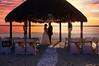 StunningSteedsPhoto-HR-2556-sunset