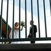 Weddings-31