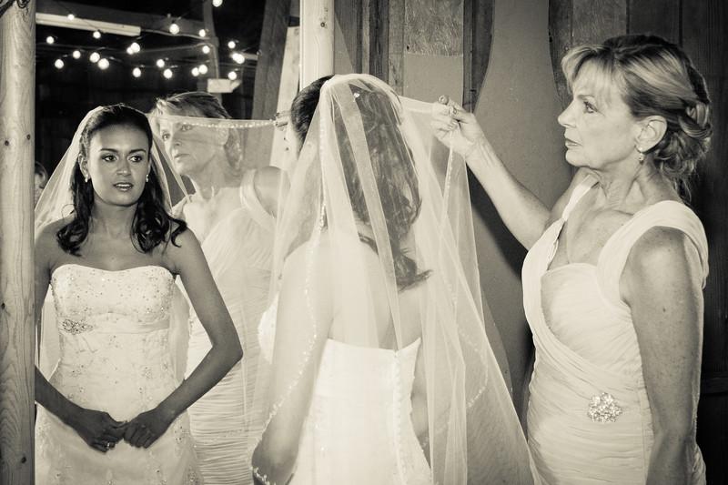 Roth Wedding-68-2.jpg