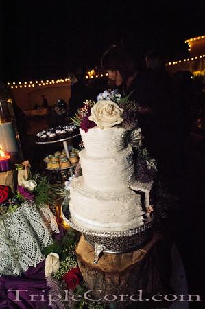 Adams Wedding 1083