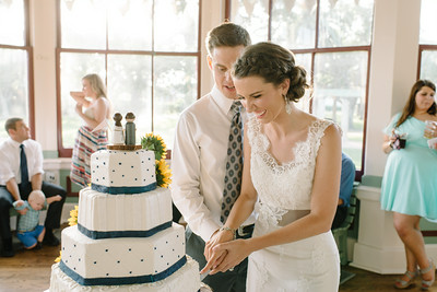 08-Cake-WBB-2013
