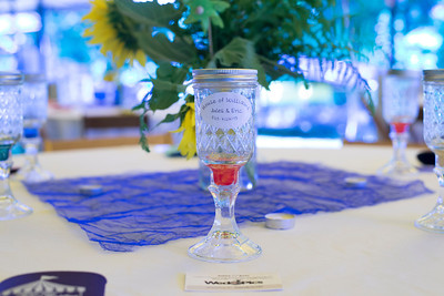 Williams_Wedding_0012