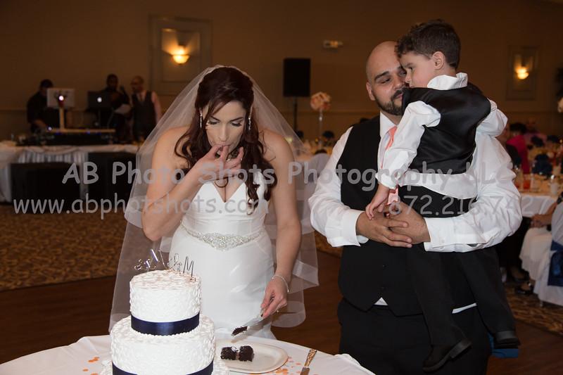 wedding (78 of 890)