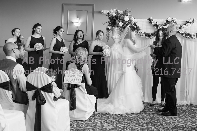 wedding (668 of 890)