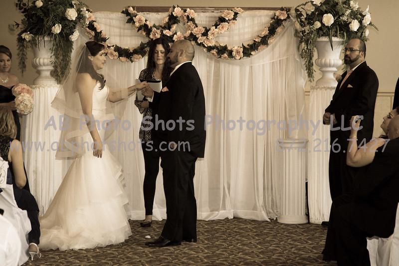 wedding (670 of 890)