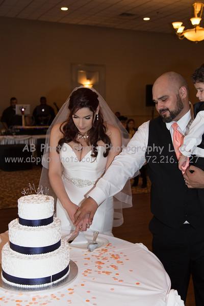 wedding (76 of 890)