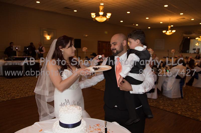 wedding (79 of 890)