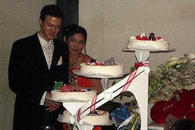 The multi leveled cake - Murten, Switzerland ... March 3, 2007 ... Photo by Rob Page III