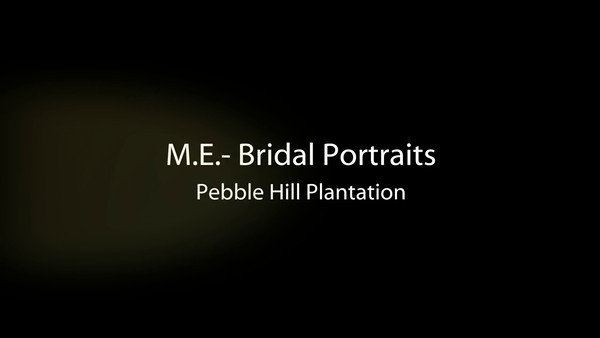 ME Bridal Portraits (VIDEO)