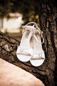 shoe_tree