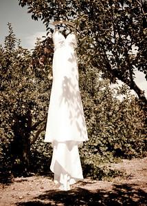 dress_tree