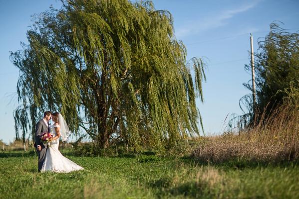 Willow Tree Far K&D