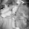 Les alliances sur la robe de la mariée