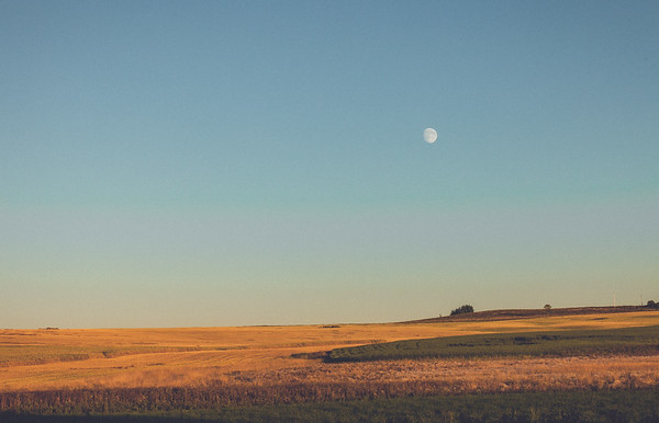 Rolling Wheat & Prairie Moon