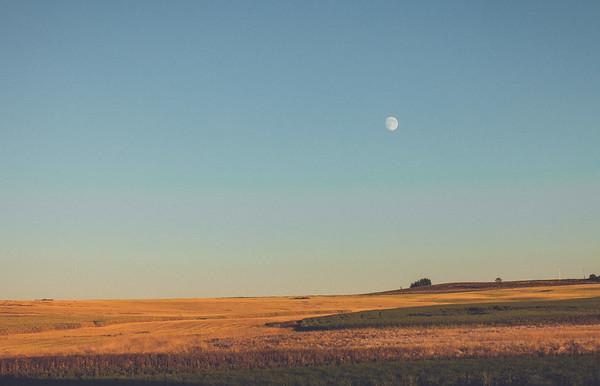 Rolling Wheat & Prairie Moon
