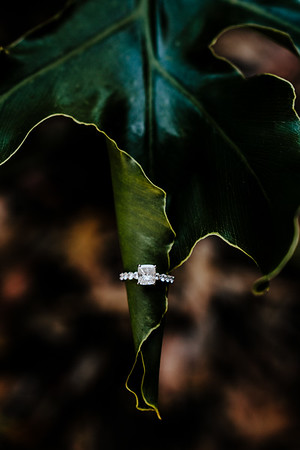 Dark & moody look for a gorgeous wedding ring detail photo.