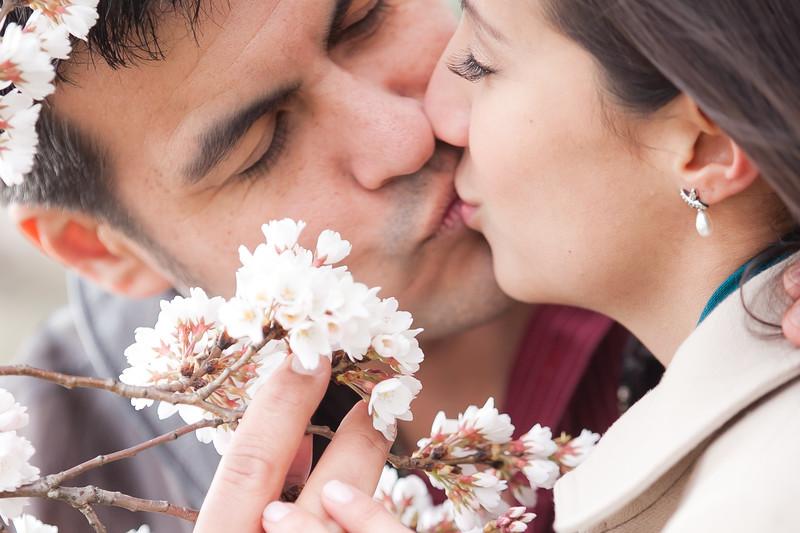 wedding engagement photography nj nyc