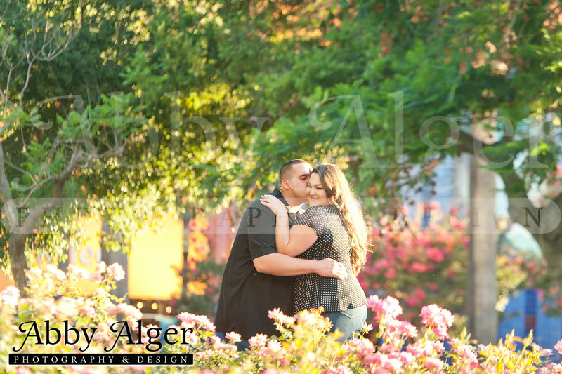 001 Monica & Nick Engagements 20140731 202707