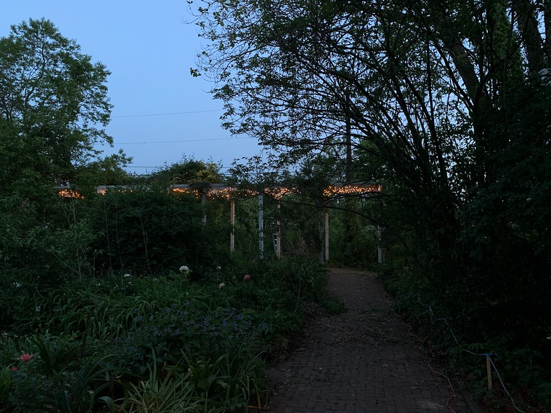 Checking lights on large arbor two days before the Bardic Night