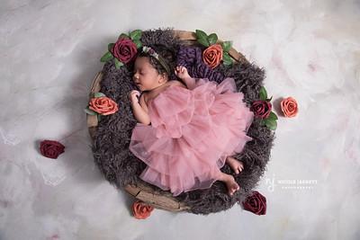 Iris Newborn Session Web-20