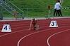 Linsie 400m