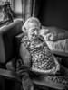 Oma in haar leefwereld_Peter De Mey