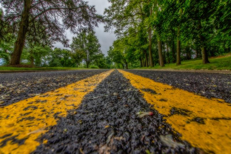 NancyH-Road-2771-Edit-Edit.tif