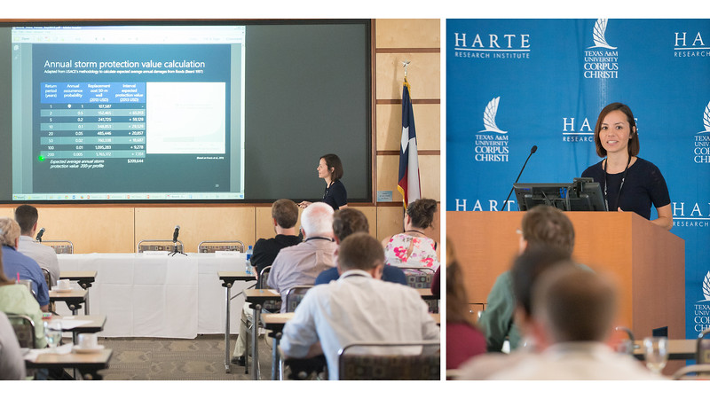 Eleanor Taylor provides information on the economic benefits of keeping sand dunes in good shape. Thursday September 24, 2015 at the Texas Beaches and Dunes: Science and Management Forum in the Harte Research Institute.