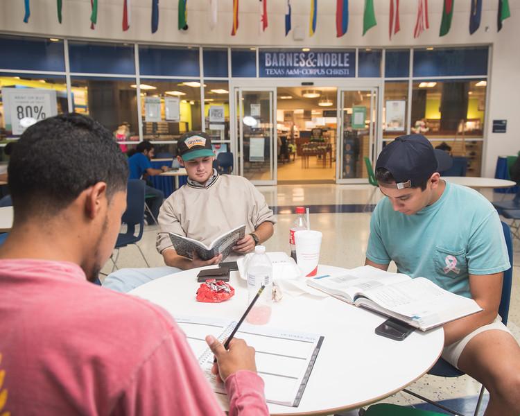 Joel Barrientos, Dakota Williams and Austen Villanueva study in the UC.