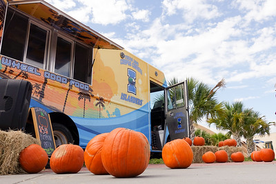 Texas A&M Corpus Christi Islander Dining invites students to purchase a pumpkin at their on-campus pumpkin patch.