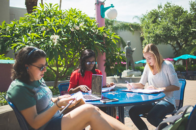 Monika Viveros (left) Bukky Babalola and Anna Guettler work on their marketing projects in the Hector P. Garcia Plaza.