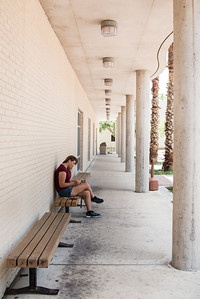 Katie Sisk, a soon to be sophomore, reads in the shade of Bay Hall.