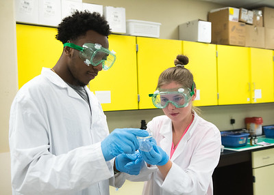 Kareem South (left) and Christina Henderson collaborate on an assignment in Microbiology.