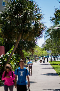 Students make their way to class on this beautiful day on the Island University.