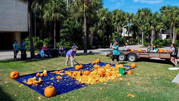 Beta Beta Beta - Epsilon Phi Chapter (TAMUCC) hold a Pumpkin Bash fundraiser on the Center for Instruction courtyard.