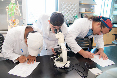 Students in Professor Valenza's biology class learning how to use a microscope in their lab.