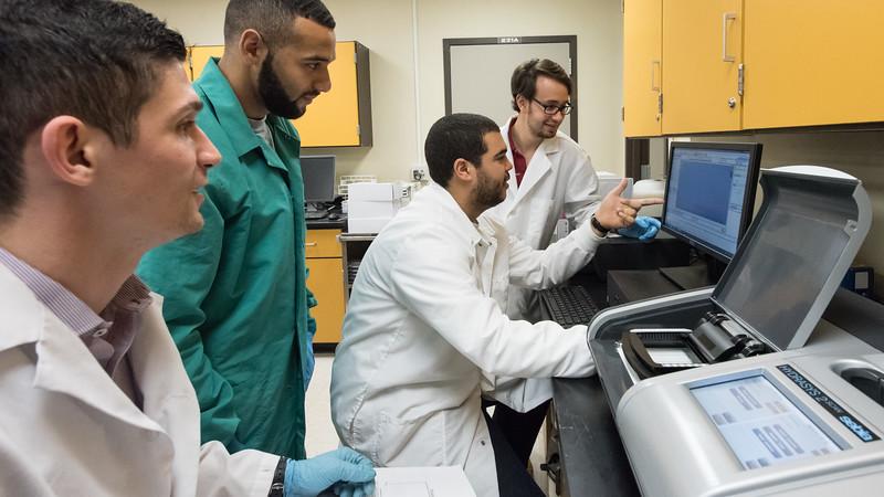 Hunter Johnston (left), Jay Luna, Gabriel Diaz, and Zackary Alghamdy work diligently researching diabetes.