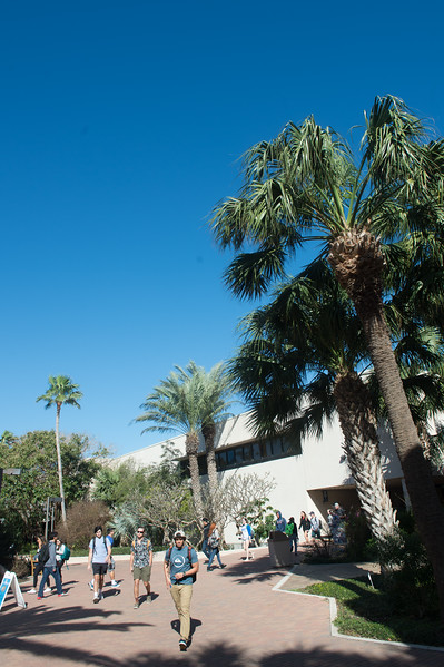 Students make their way across campus on another beautiful day at the Island University!