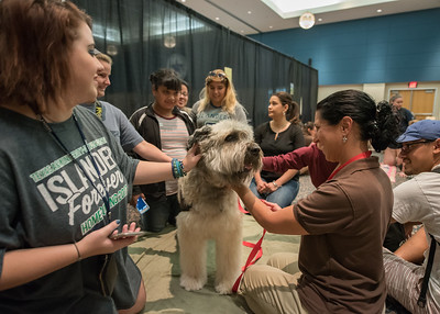 To see all the photos from this event go to: https://islanduniversity.smugmug.com/Events/Events-By-Year/2017/050217-PAWS-on-the-Island