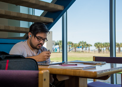 Michael Maceda studies Music Theory in Corpus Christi Hall.