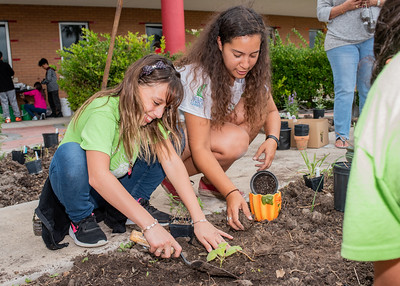 Kadance Willems (Left) and Islander Melissa Zamora (Right) plant in the ECDC community garden.