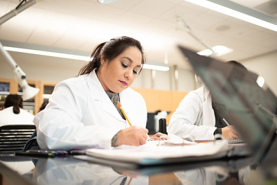 Pre-Nursing student Alexis Cadena works on lecture notes in Anatomy 1 at Tidal Hall.