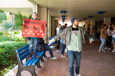 Harper Lee (left) and Nico Montalvo of the Honors Student Association promote their rose sale in the University Breezeway.