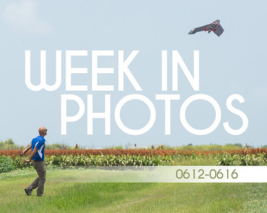 WeekInPhotos-0616